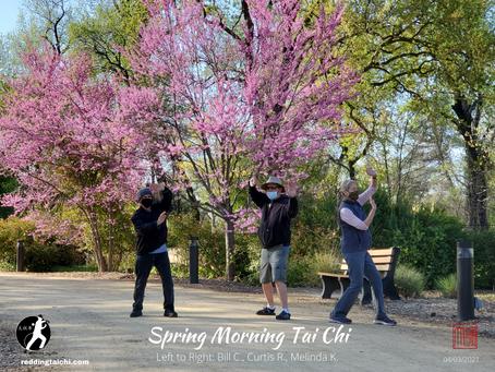 Spring Time in the Arboretum