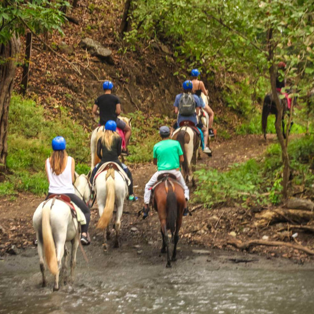 dimante horse back adventure.jpg