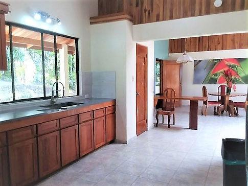 kitchen lake arenal.jpg