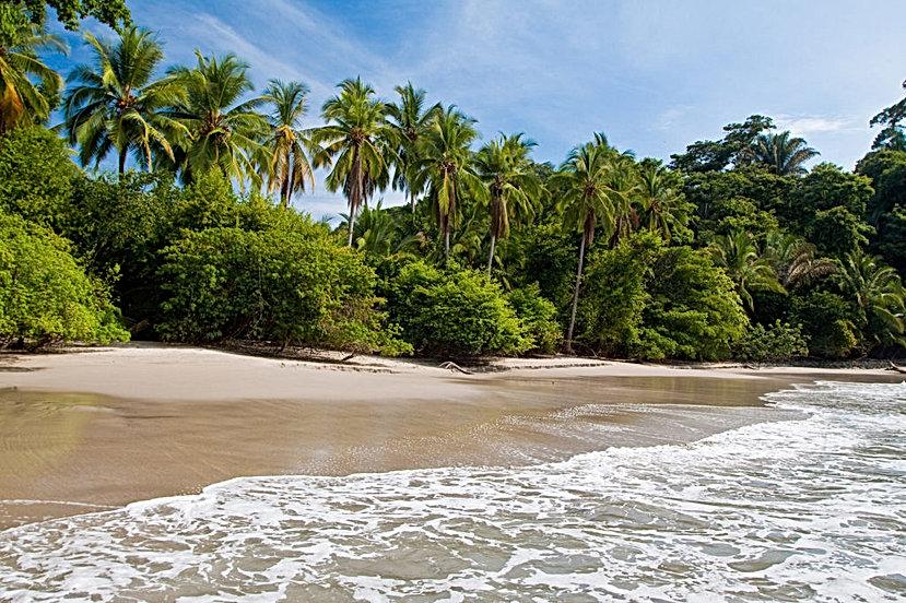 tropical_beaches_Costa_Rica.jpg