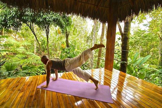 yoga main.jpg