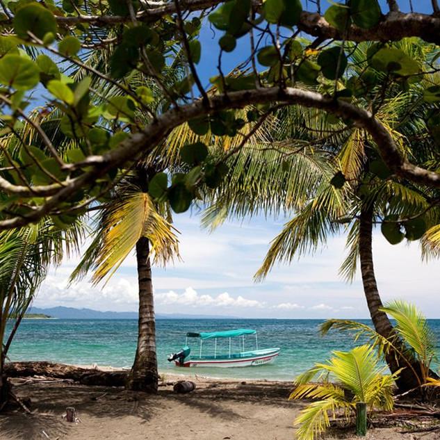 caribbeancr.jpg