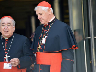 BREAKING: Vatican Source: Pope dismissed Cdl. Müller for following Church rules on abuse cases