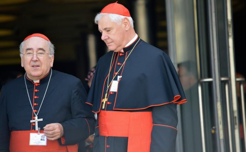 cardinal muller, vatican, catholic church, catholic, pope francis, sex abuse