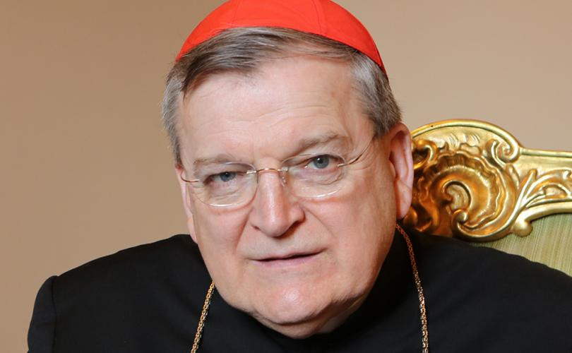 cardinal burke, catholic church, pa grand jury, sex abuse, homosexuality, gay