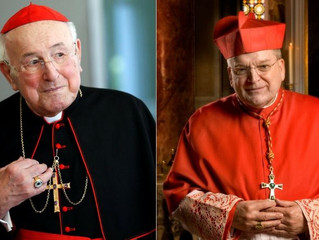 Dubia Cardinals: Amazon Synod an Unprecedented Threat to Church