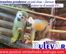 Trazimo prodavce za PET SHOP  - Zemun