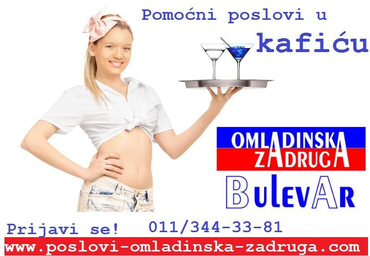 Omladinska I STUDENTSKA zadruga Bulevar,  pomocni poslovi u kaficu preko zadruge Beograd
