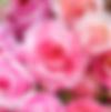 スクリーンショット 2019-05-02 19.36.25.png