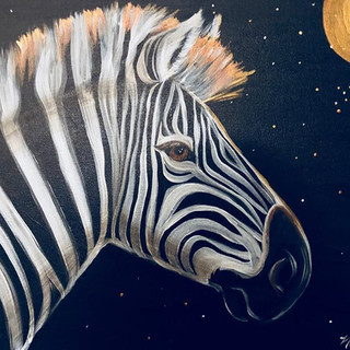 MOONLIT ZEBRA