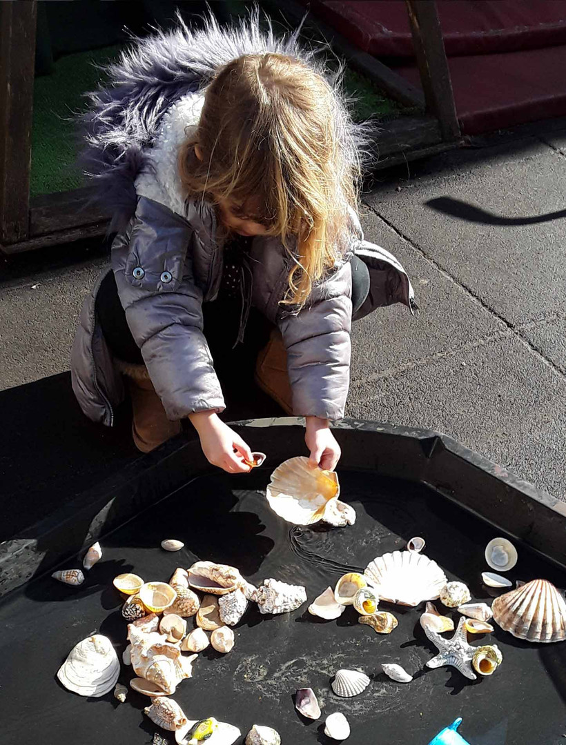 learning about seas and oceans using shells