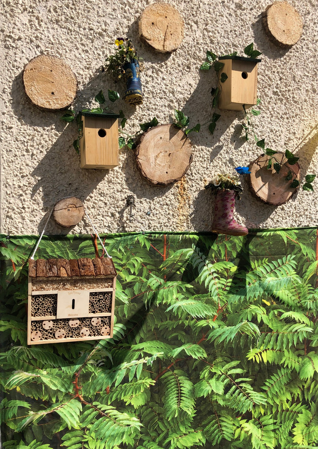 encouraging wild life in our garden_edit