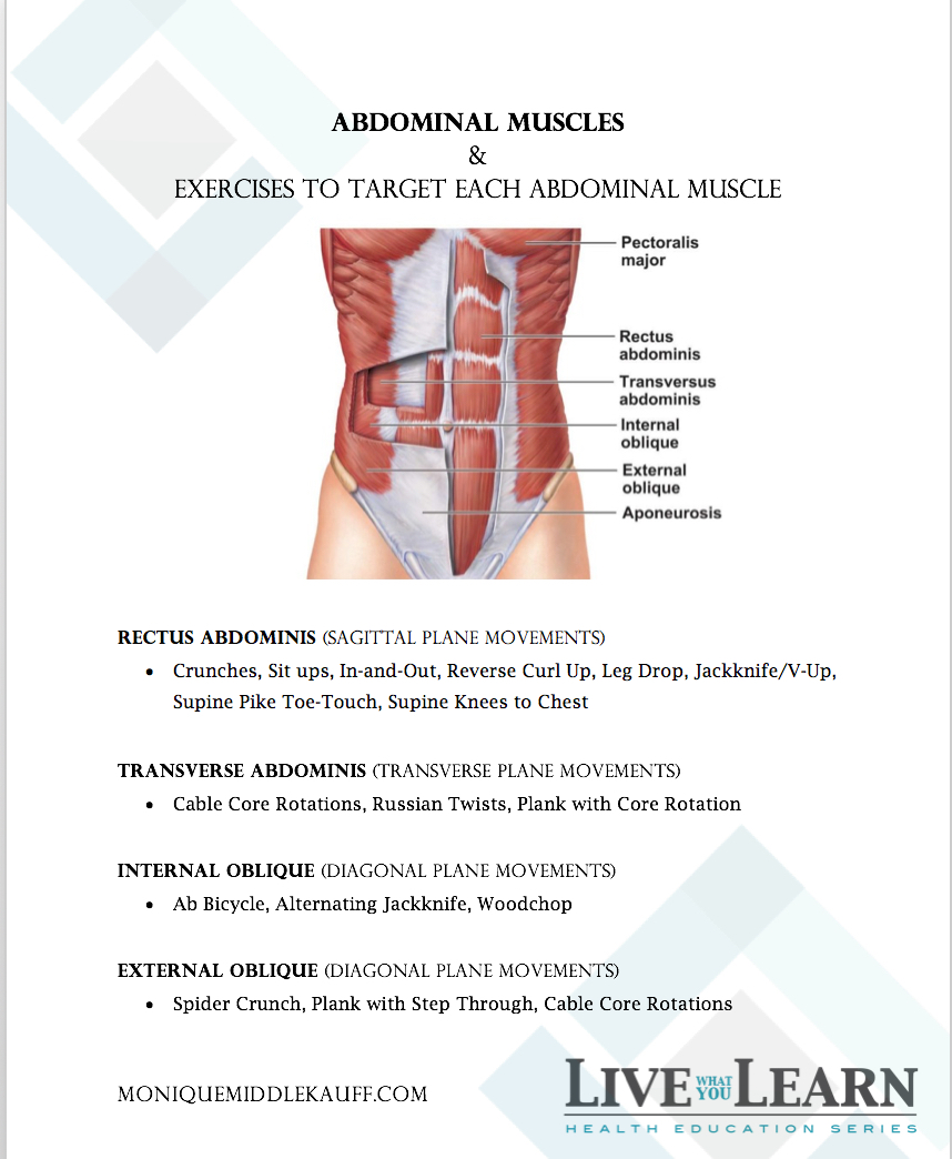Abdominal Muscles & Exercise