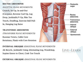Abdominal Muscles & Exercises to Target Each One