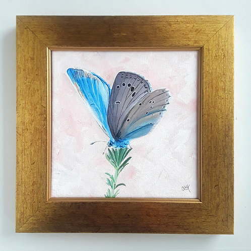 Framed Butterfly Art Painting