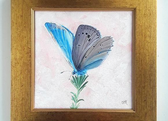 Framed Butterfly Art Painting
