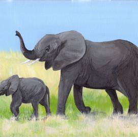 Elephants 001.jpg