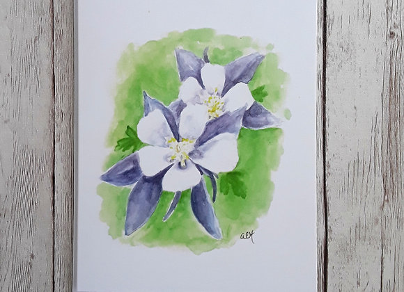 Columbine Flower Card, Blank Greeting Card with White Envelope, Purple and White