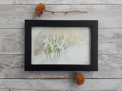 Snowdrop Original Watercolor Painting with Black Frame