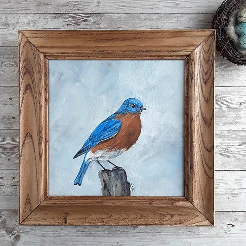 Bluebird Art, Original Acrylic Art, Bluebird Painting, Blue and Orange Bird