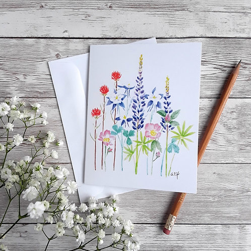 Colorado Wildflower Cards, Blank Cards with White Envelopes, Floral Art