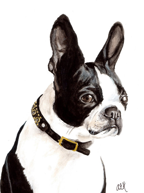 Custom Dog Pet Portrait, Original Watercolor Pet Painting