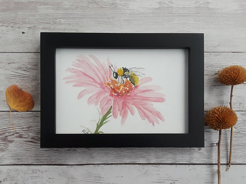 Aster Original Watercolor Art, 4 x 6 Inch Painting with Black Frame