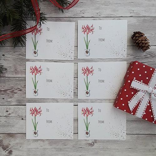 Amaryllis Christmas Gift Tags, Set of 6
