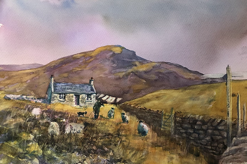 Crofting in the hills