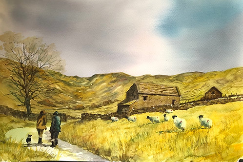Stroll in the dales