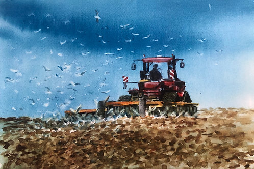 We plough the fields and scatter pack of 4 Cards