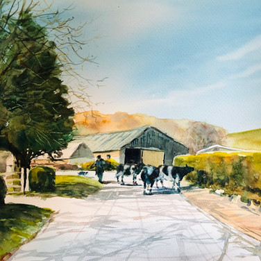 Milking time, Boynton