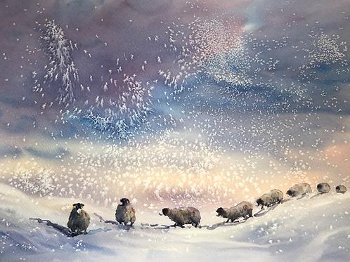 Winter swaledales
