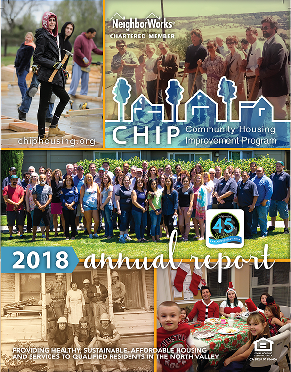 2018 CHIP Annual Report (p.1)