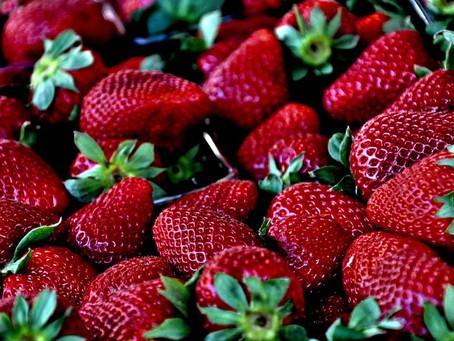 .. Cure de Fruits au fil des Saisons ..