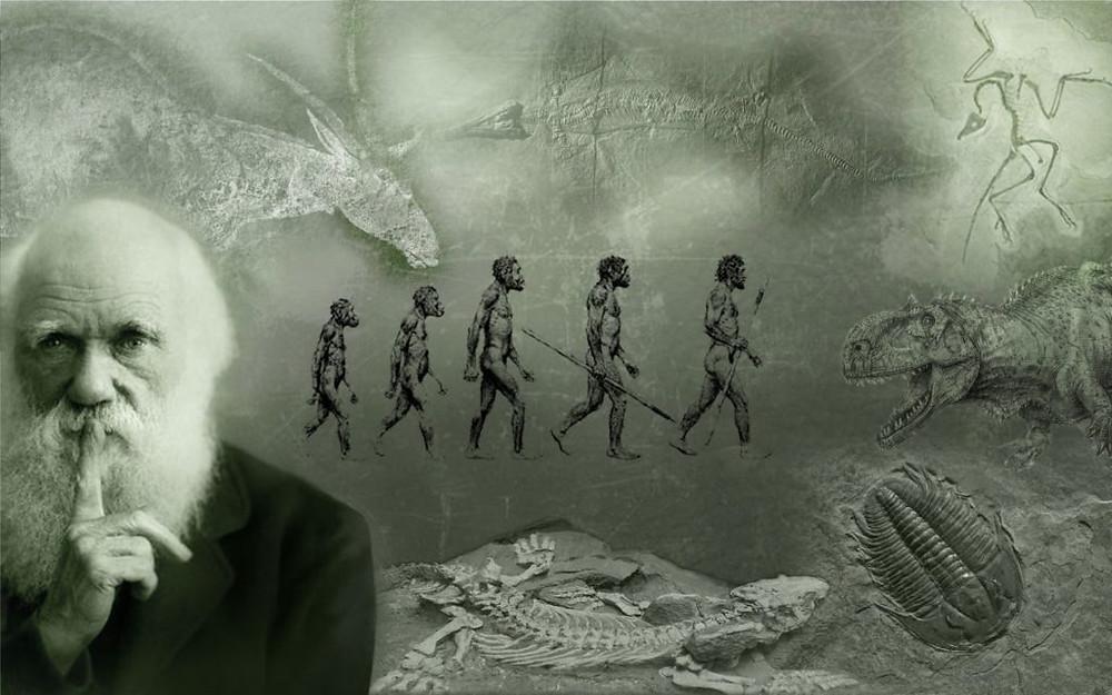 Evolution des espèces - Charles Darwin