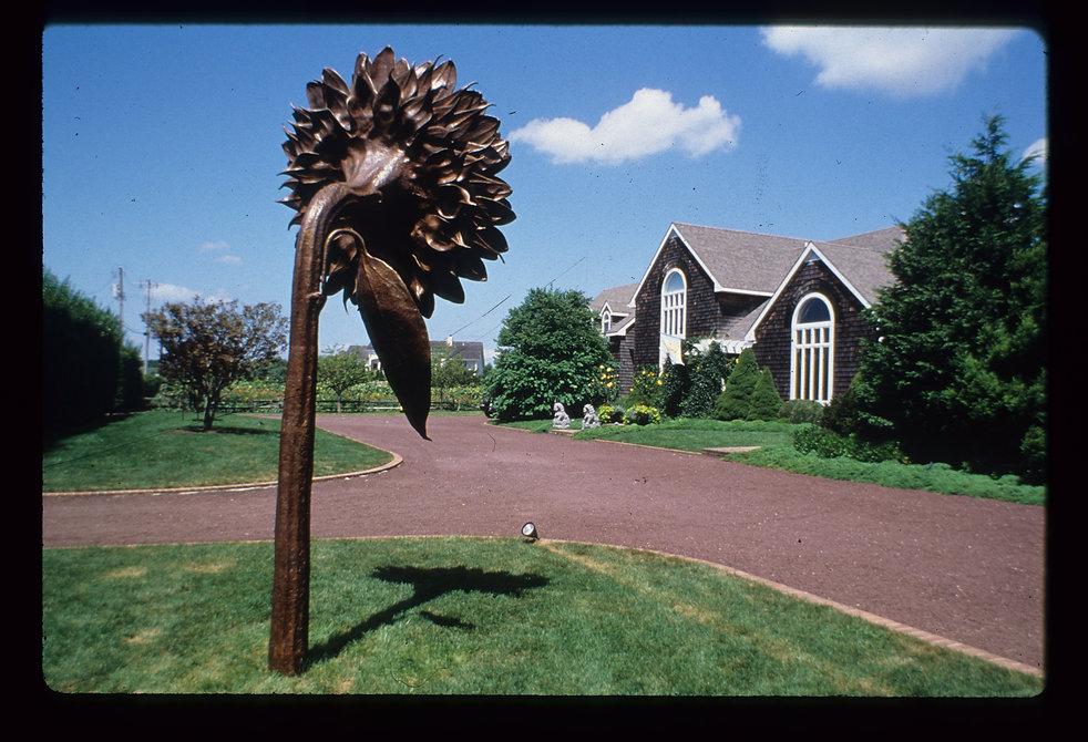 kevin_berlin_sunflower_sculpture_5 copy.