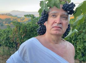 """Kevin Berlin / """"Grapes"""" Short Film"""