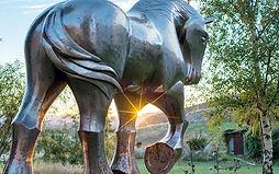 Iron-Ride_Web_0004_Raymond-Herber-B84441