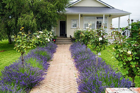 Olivers-Farmstay-Bed-breakfast-front-of-