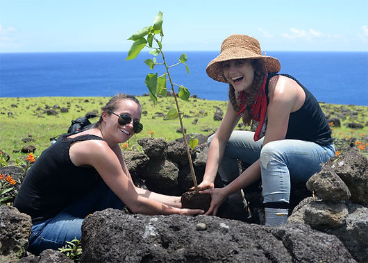 planting-makoi-tree-women-happy.jpg