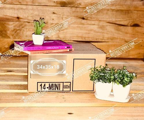 Caixa de papelão seminova mini / parede simples 📏 34compx35largx18alt