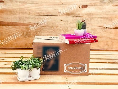 Caixa de papelão seminova pequena / parede simples 📏39compx29largx23alt