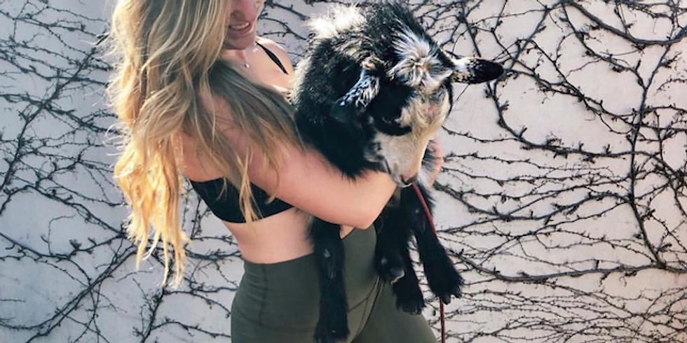 The Lakes At Thousand Oaks Goat Yoga 4/6