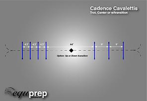 Cavaletti Exercise Example 1