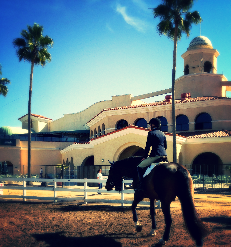 Del Mar International