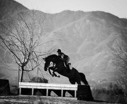Three Day Ranch