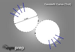 Cavaletti Exericse Example 2