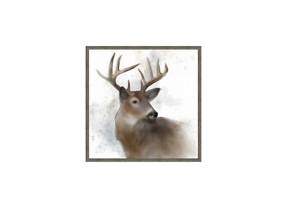 Rainsoft Deer