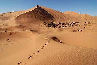 Erg_Chebbi_Maroc.jpg